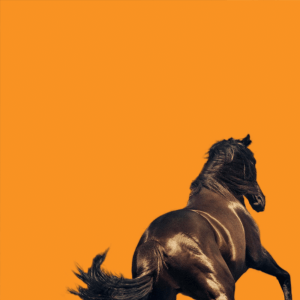 Episode 644: Bruce Springsteen – 'Western Stars'