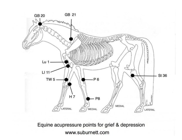 acupressure points for grief and depression
