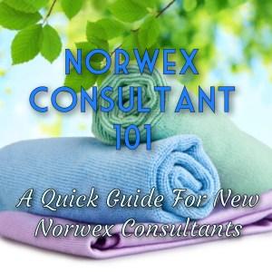 Norwex Consultant 101