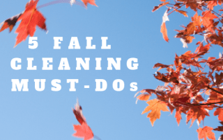 fall cleaning, kris carlson, cleaning tips, succeed and shine, autumn, norwex,