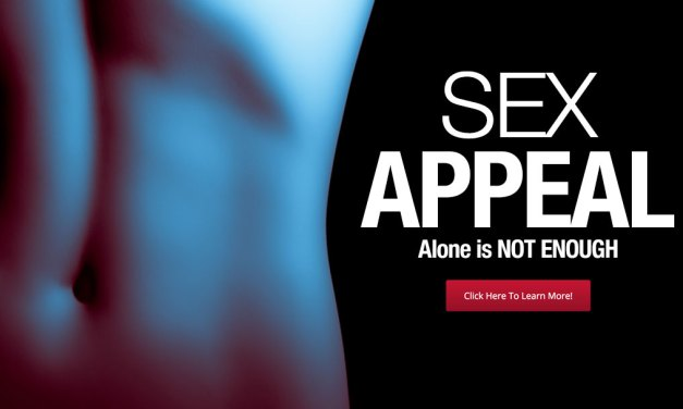 Is Sex Appeal Enough? or Should Marketing Focus on Conversion Results?
