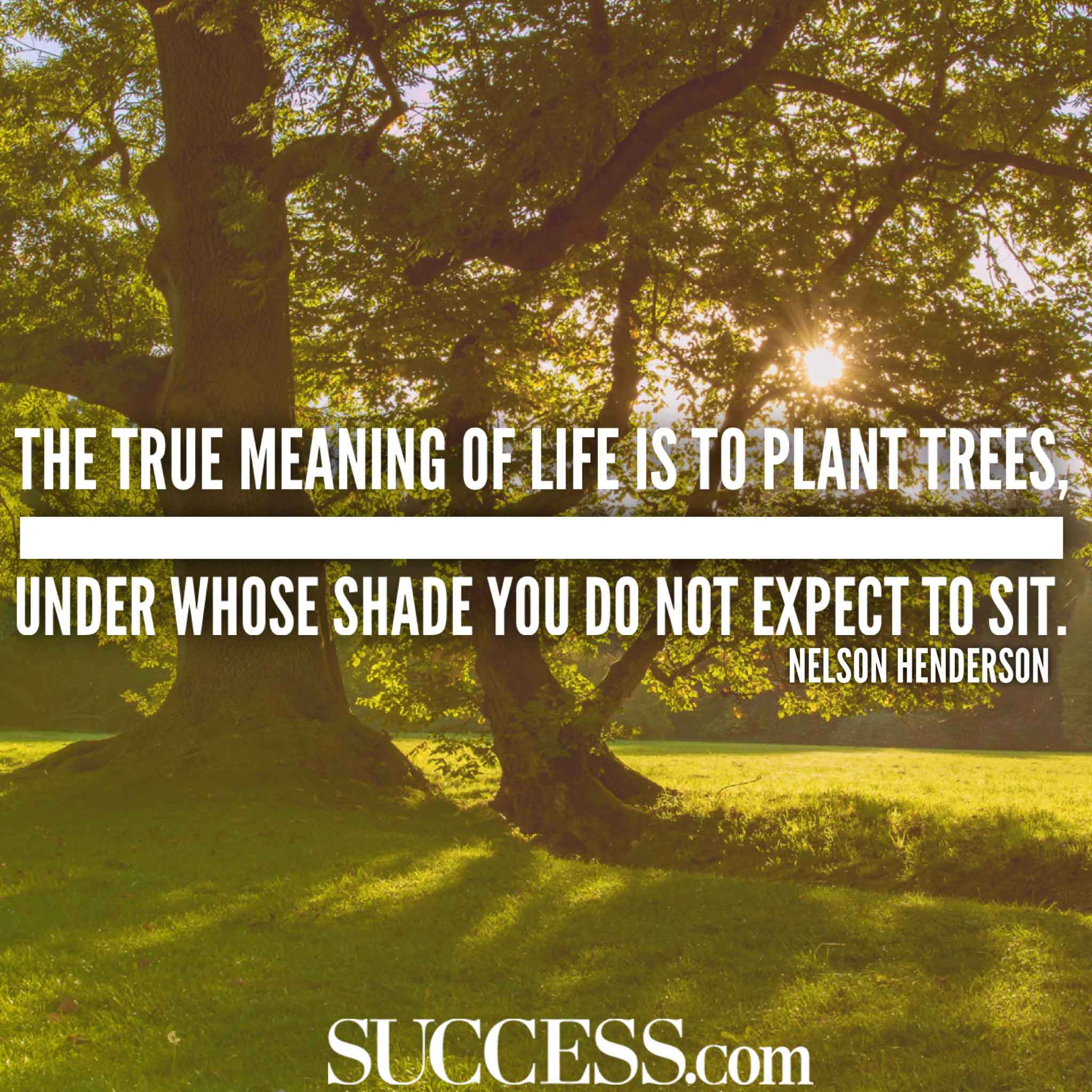 The Meaning of Life in 15 Wise Quotes