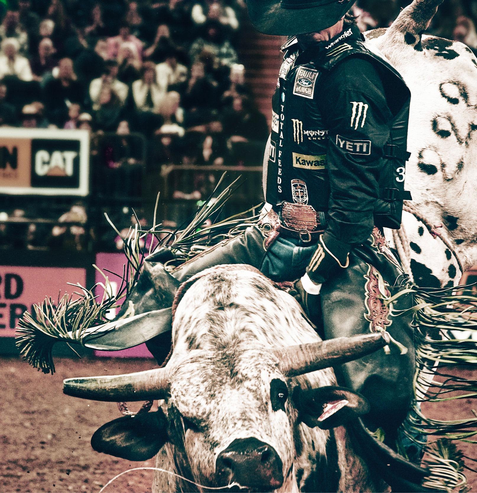 2f6b2042 The Baddest Bull Ride Has a Secret to Success: Always Pick the Baddest Bull