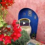 Small Garden Ideas Pt 1- How to make a small space garden look larger – Interview