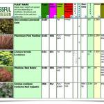 Plant Selection – Fabulous in February