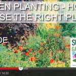 [DESIGN SHOW 8] Garden plants – how to choose the right landscape plants for your garden
