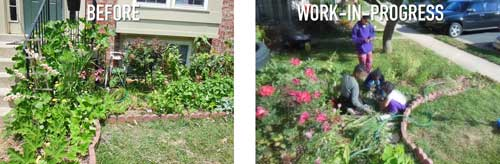 Front-Yard-Makeover-before-after