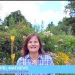 Successful Garden Design Tips 12 – Creating colourful borders