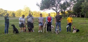 SJC students Scout, Toby, Ellie, Sherman, Gracie, and Greyson enjoy a social walk!