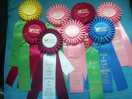 Shayne's ribbons from this weekend.... the toys she got ...well, let's just say most of them are not still alive :)
