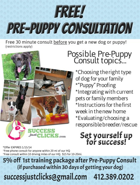 Pittsburgh Free Puppy Consultation