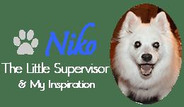 Niko The Little Supervisor & My Inspiration