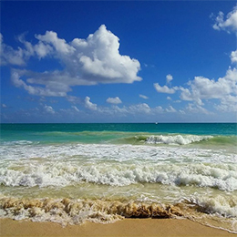 Hawaii Ocean Waves