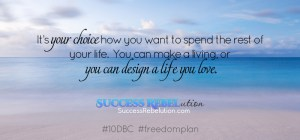 It's your choice how you want to spend the rest of your life. You can make a living, or you can design a life you love. Success Rebelution
