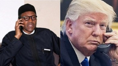 Buhari and Trump STB