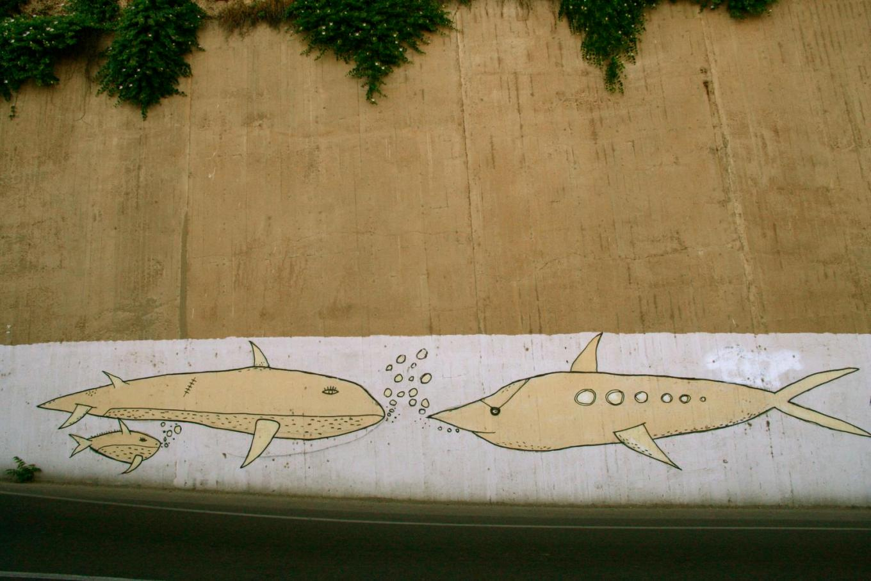 Dell'imperturbabilità, e delle balene a Cagliari.