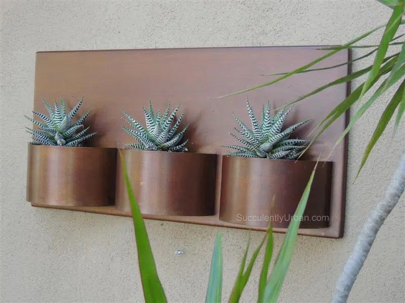 Metal Wall Planter Urban Succulents
