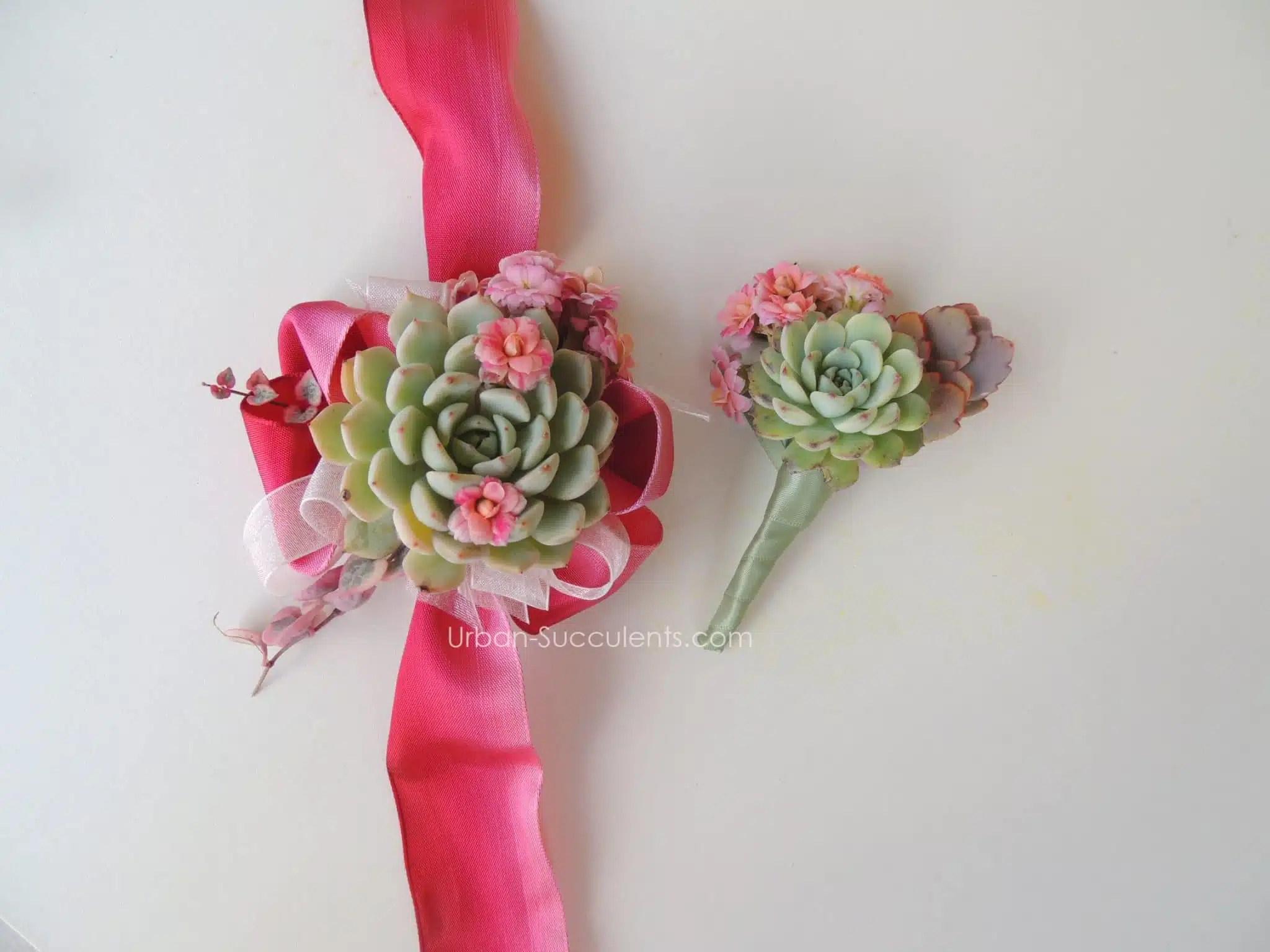 Succulent Boutonniere Set