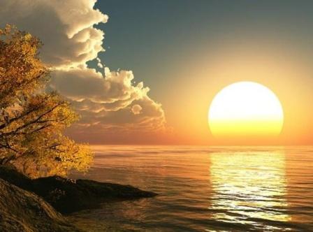 د. عبير صالح : فيتامين الشمس والمسنون
