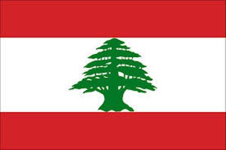 """بعد 28 سنة كـ """"أرملة"""" لبنانية تكتشف مفاجأة مذهلة"""