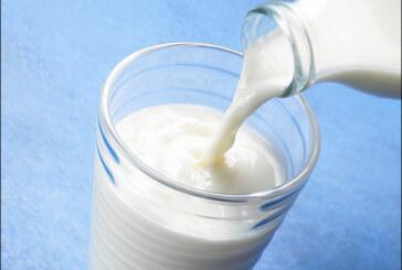الحليب النباتي: فكري في تناوله بسبب هذه المنافع العالية