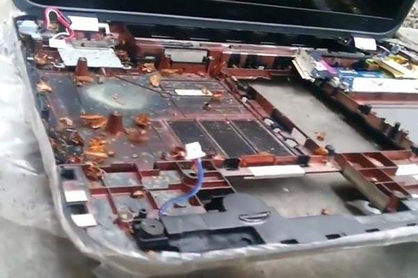 بالفيديو: شاهد ماذا وجد شاب عندما حاول إصلاح جهاز لاب توب؟