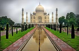 """الهند.. اعتقال عنزة أكلت من """"عشب مسؤول"""""""