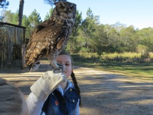 Ruby holding a spotted eagle owl at Radical Raptors