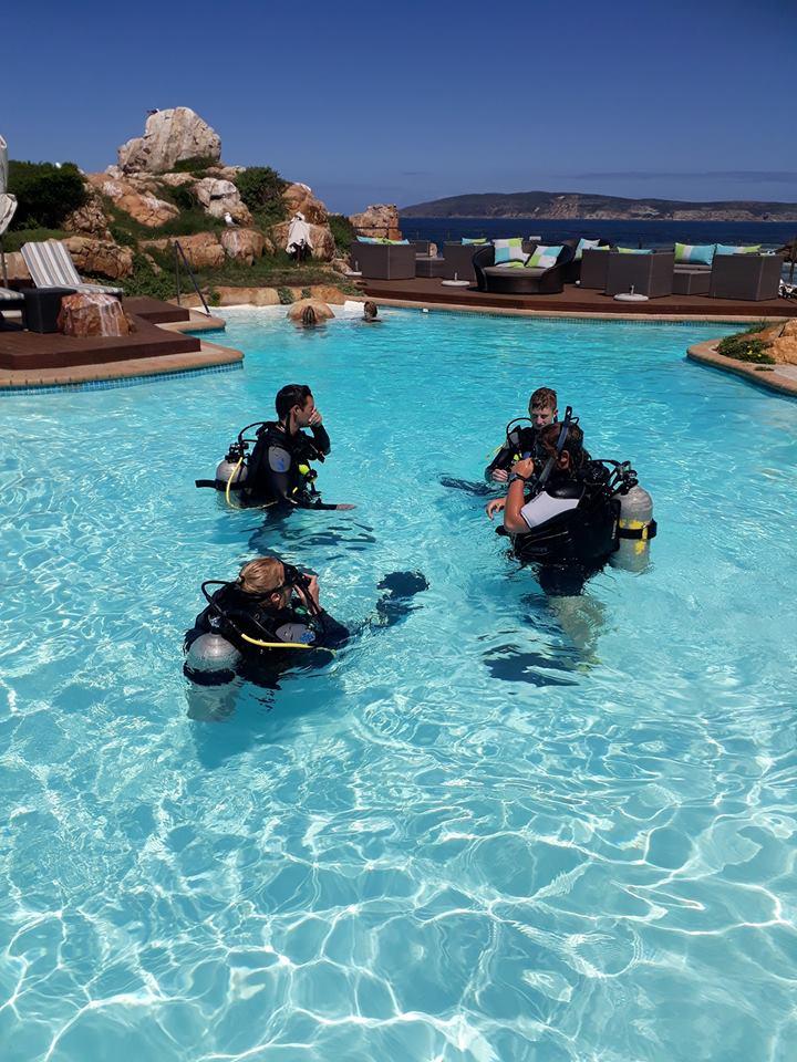 SCUBA training in pool
