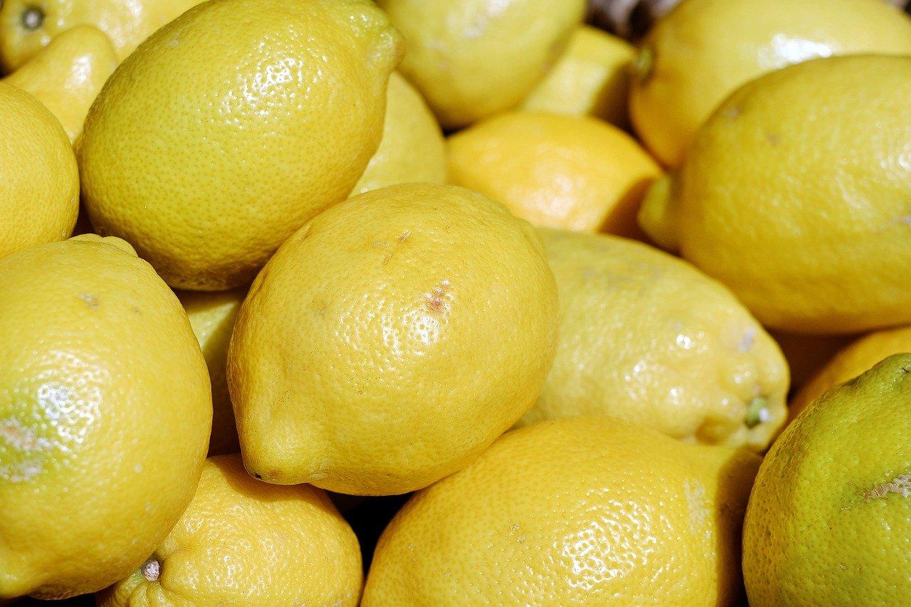 I limoni di Sorrento, il vanto della penisola sorrentina