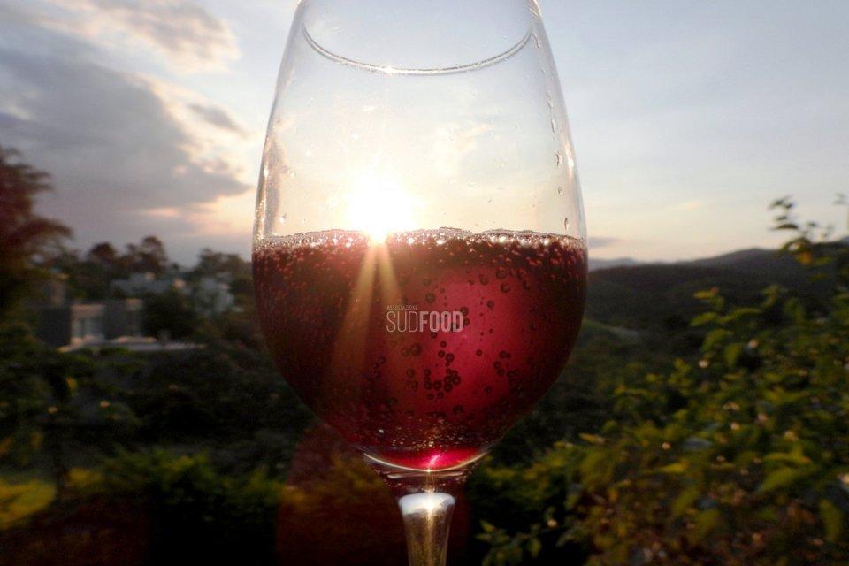 Le tipologie di Lambrusco, vino icona dell'Italia.
