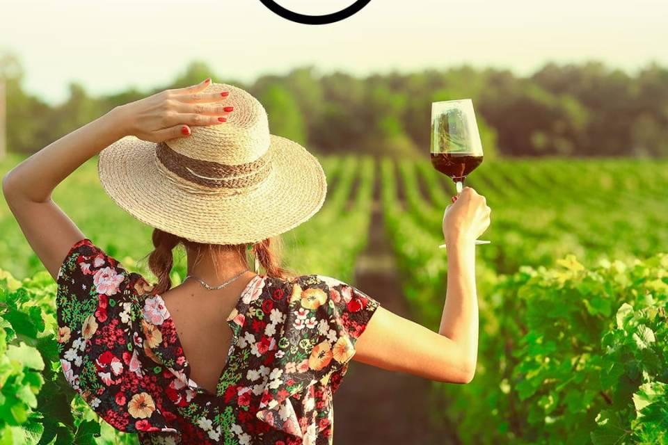 Vino.com diventa partner di Sud Food. Tra le più grandi vetrine online di vini