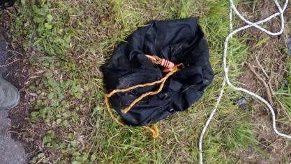 Macabre découverte à l'étang de la Cafenière à Soignies, un chien retrouvé mort noyé, lesté par des pierres: «C'était une véritable vision d'horreur»