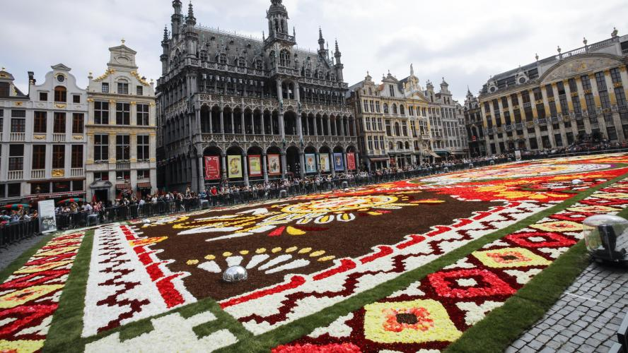 tapis de fleurs sur la grand place