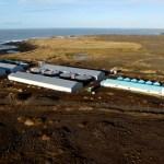 Vilja framleiða allt að 200 tonnum af laxahrognum á Reykjanesi