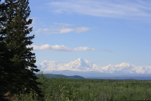 Denali coming home from Fairbanks 2019