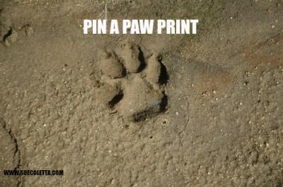 Pin a paw print
