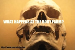 What happens at The Body Farm?