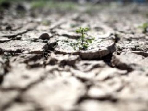 Klimakolumne: Deutschland 2050