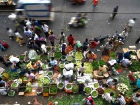 Corona-Pandemie: Verteilungskampf um den Impfstoff