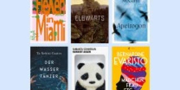 Bücher des Jahres: Unsere Besten