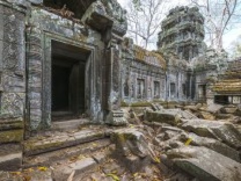 Archäologie: Metropole im Dschungel