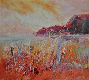 Grasses and colour at Northcott Mouth
