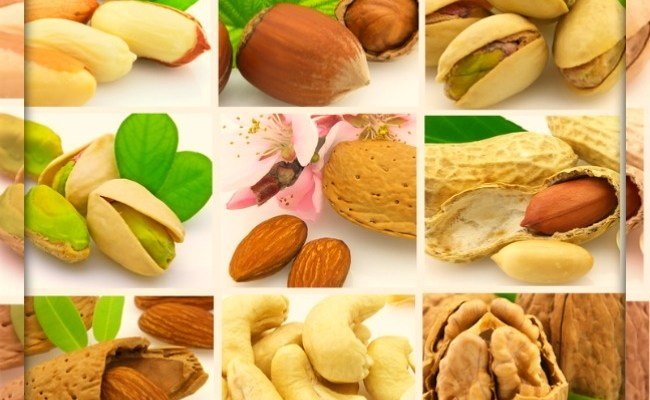 Nutritious Nuts : Cracking Their Health Benefits