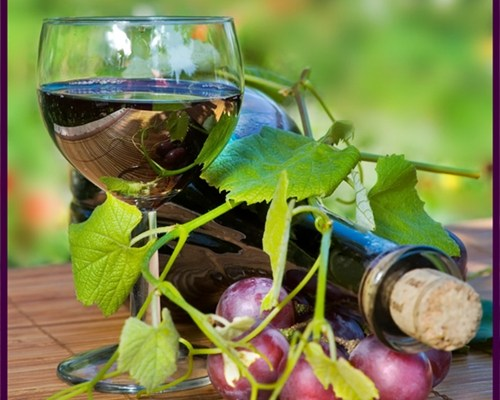 Resveratrol : Benefits of Red Wine in a Pill