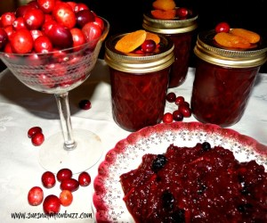 Cranberry Chutney with Apricot & Almonds