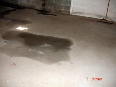Basement Inspection