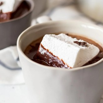 Homemade Marshmallows are the perfect way to dress up rich hot chocolate during the winter months. Package them up as gifts, or dip them in caramel and chocolate at the fondue bar!