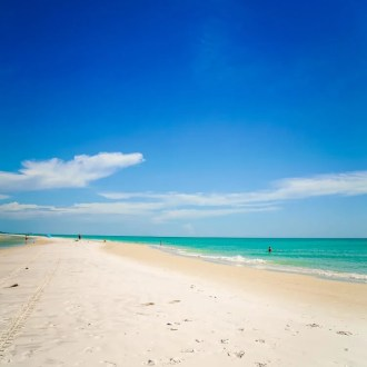 Looking for the perfect spot to spend a day on Anna Maria Island, head to Bean Point for one of the most beautiful beaches in the country!