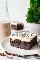 Chocolate Irish Cream Cake is made with a generous dose of Irish cream and topped with a fluffy, pudding-based frosting. This grown-up dessert is moist, rich, and oh-so-boozy!
